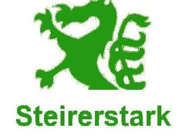 Steirerstark – IT Security
